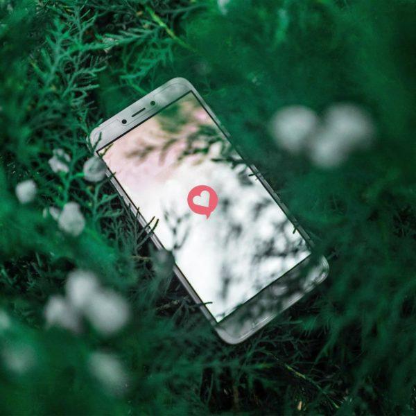 Smartphone mit einem Herz auf dem Display, das in einer Tanne liegt